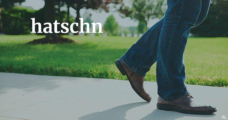 Österreichisch für Anfänger   hatschn