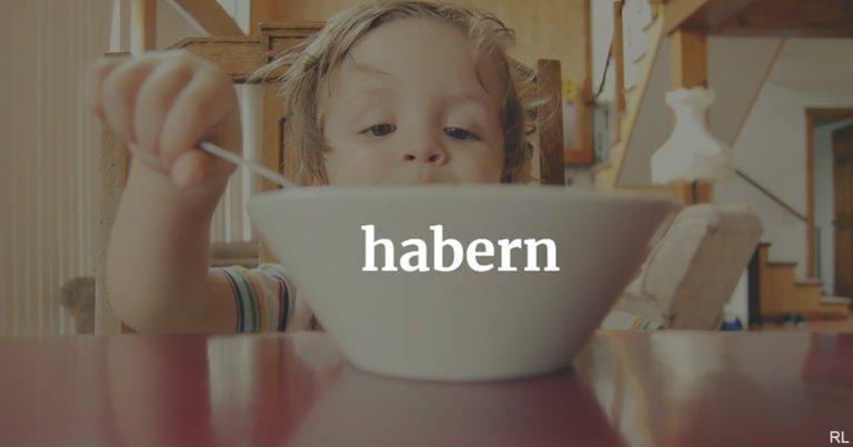 Österreichisch für Anfänger | habern