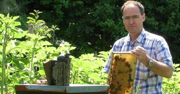Integration mal anders: Bienenzucht hilft bei der Eingliederung
