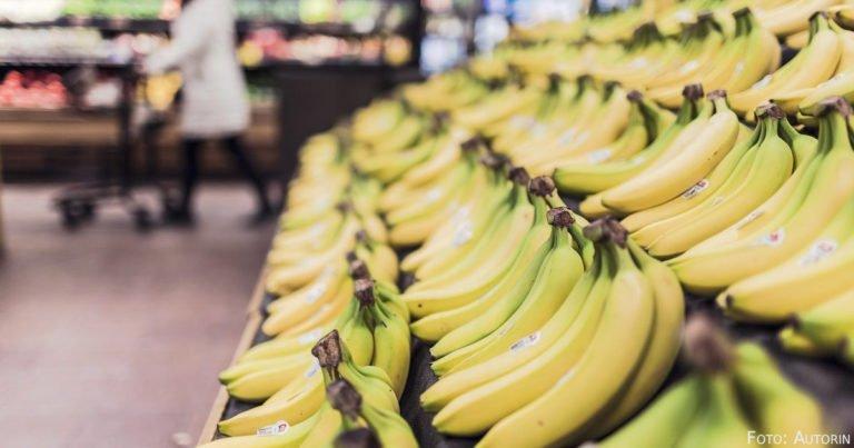 Auf der Suche nach Dollars und Bananen