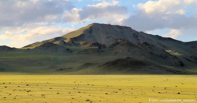 Humboldt in Kasachstan